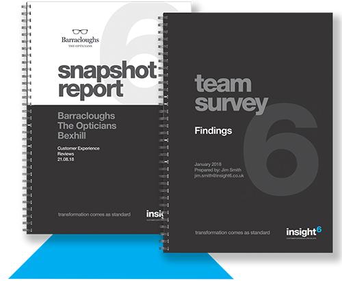 insight6-snapshot-report